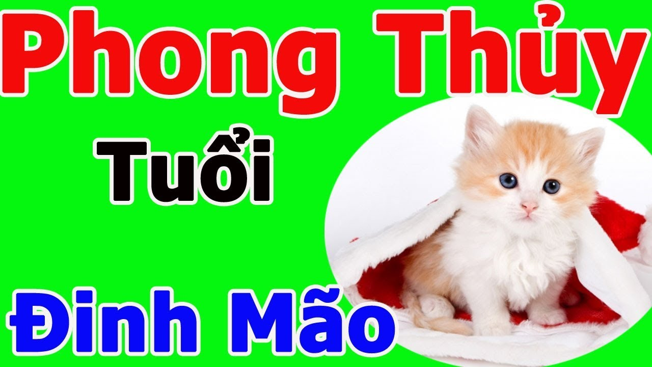 phong-thuy-tuoi-dinh-mao-1987-1